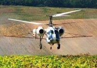 Услуги по десикации подсолнечника вертолетом