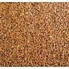 Продам пшеницу 500 тонн